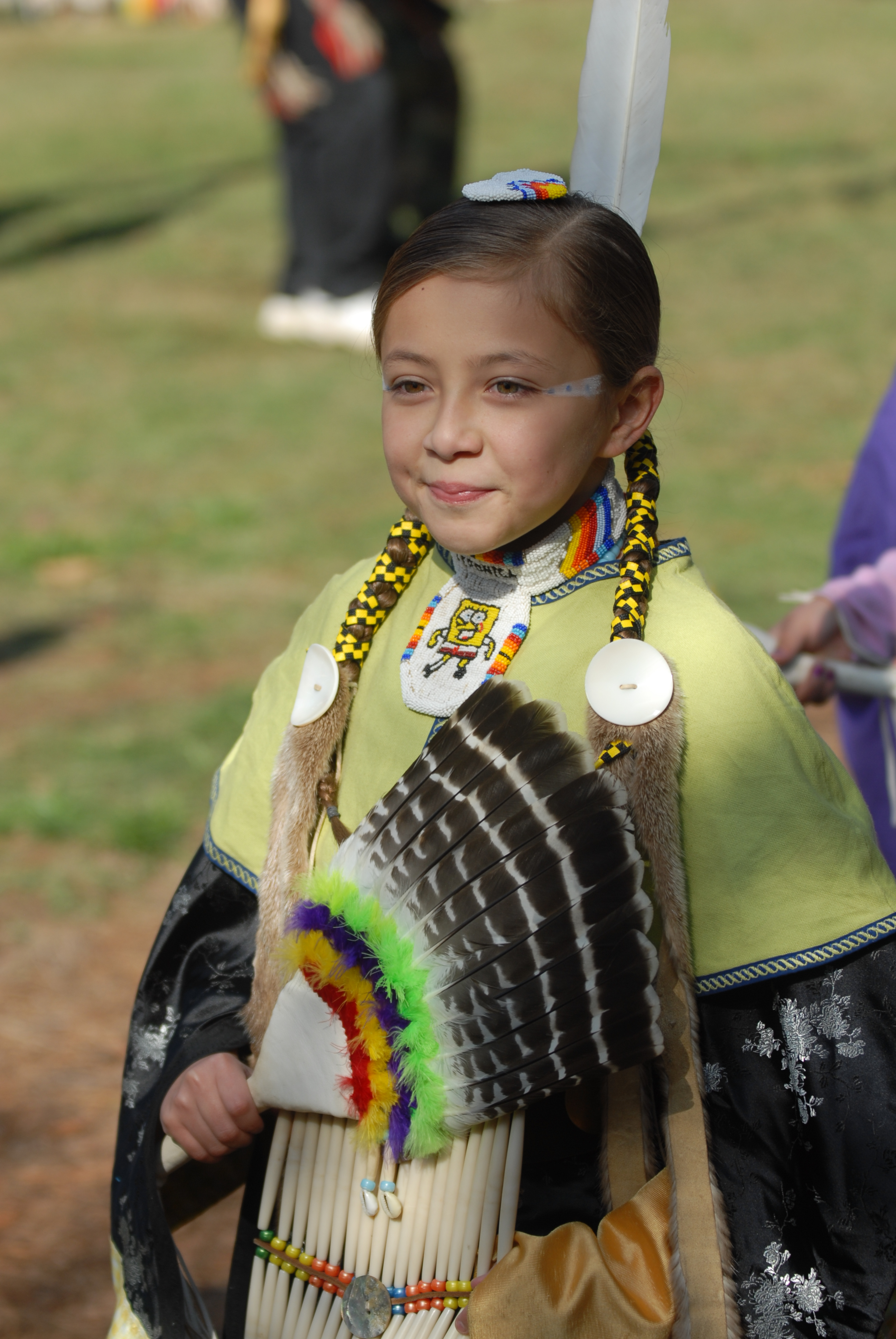 Stone Mountain Park Pow Wow